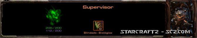 Supervisor - Overseer