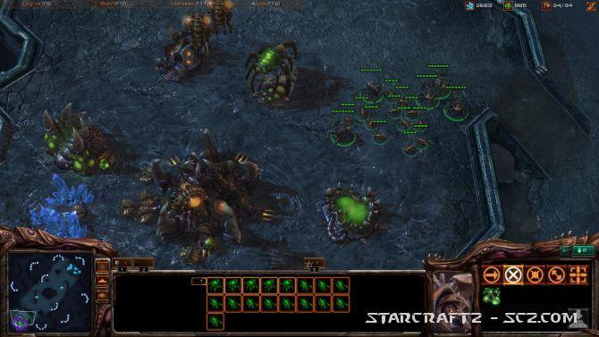 Táctica ofensiva Zerg contra Murallas Terran