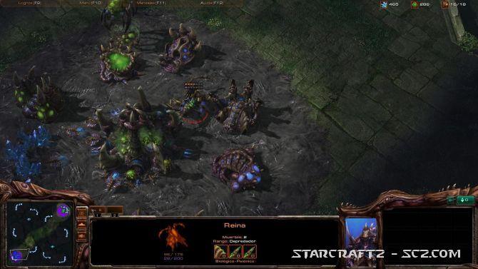 Contraataque a Rápido Rush Zerg contra Zerg
